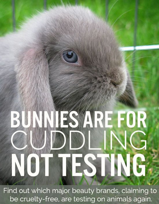 no animal testing l'oreal Sharing beauty with all